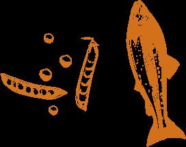 Légumineuses et poisson gras